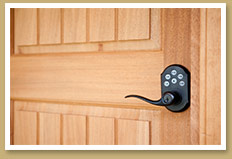 Premier Playhomes - Custom Door & Keyless